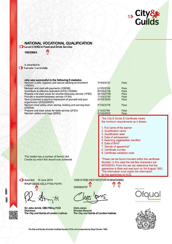 City & Guilds E-Certificate | ACE - Website